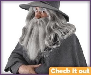 Gandalf Costume Beard and Wig.