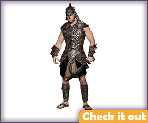 Gimli Warrior Costume Set.