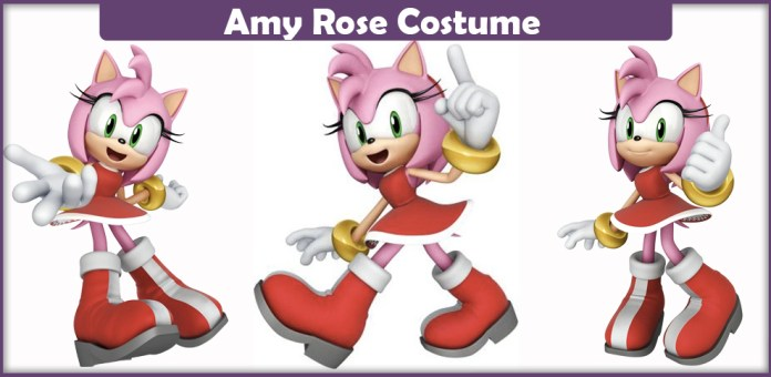 Amy Rose Costume