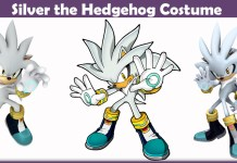 Silver the Hedgehog Costume