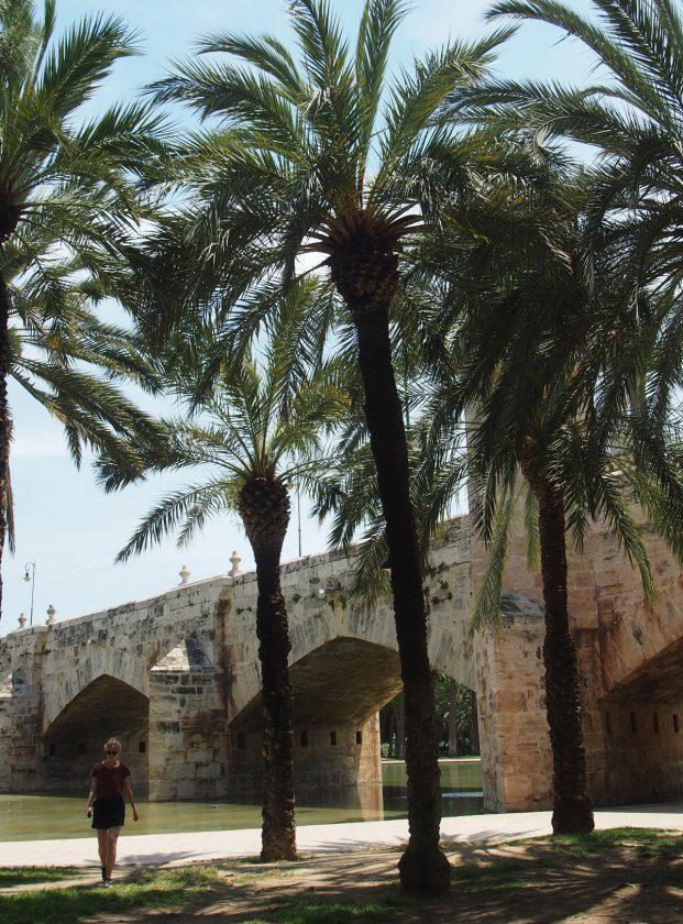 Brücke mit Palmen
