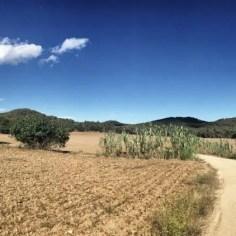 """Nach """"Calella de Palafrugell"""" führt der GR 92 ein gutes Stück durchs einsame Hinterland."""