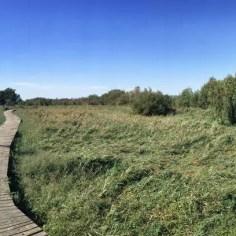 Holzstege durch sumpfiges Gebiet: Etappe 4 bietet wenige Höhenmeter aber viel Abwechslung!