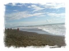spiaggia seggio marina castagneto carducci