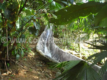 Tobogan Piscina Hotel Rafiki Safari Lodge Costa Rica