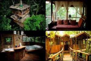 Finca-Bellavista-tree-house