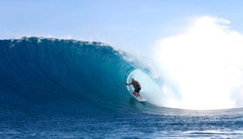 calder surfing