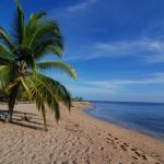 Caribbean Region Surf Spot Guide