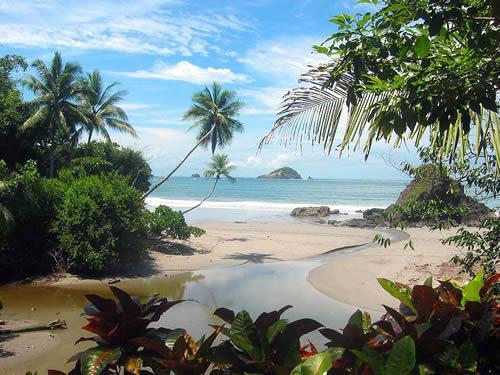 Tamarindo Surf Spot Guide   Costa Rica Journeys