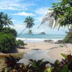 Tamarindo Surf Spot Guide