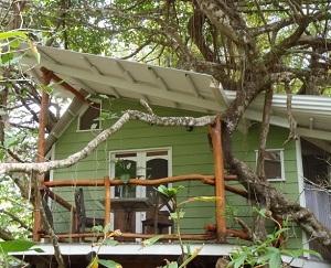 Playa Selva Tree House