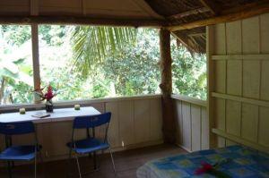 Tamandua Biological Station  3