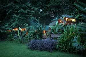 tree-house-lodge