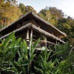 Casa Vida Verde