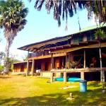 Jungla del Jaguar Hostel