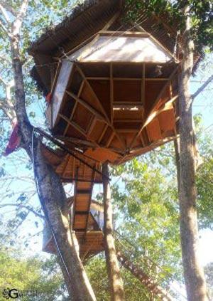 Josephs-Treehouse