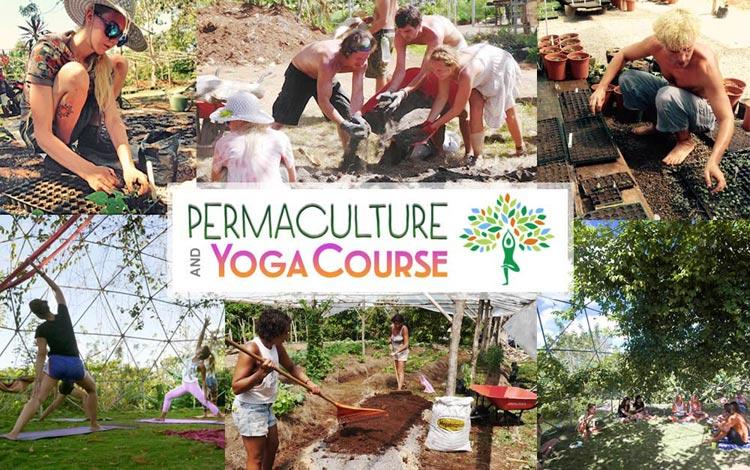 Permaculture-Yoga-Program