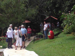 espiritusanto coffee tour