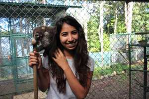 Volunteer with an awild animal