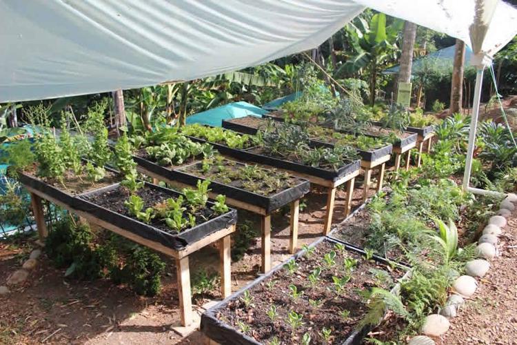 osa-eco-garden
