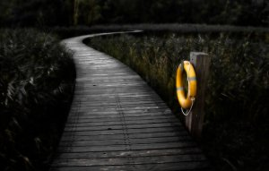 lifes path