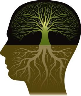 knowledge meditations