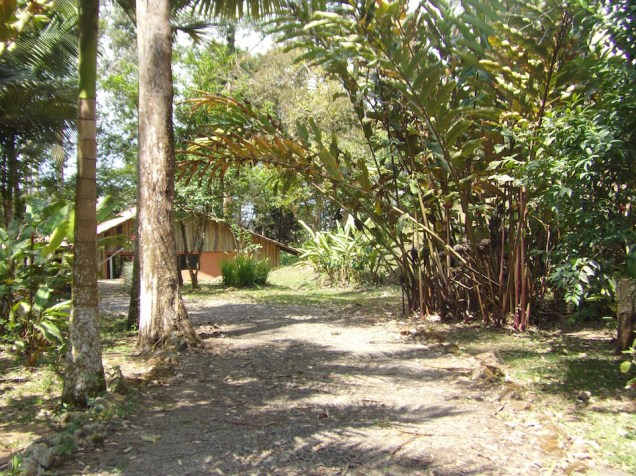 tourism-business-for-sale-costa-rica.jpeg