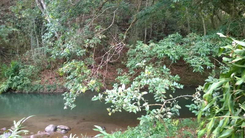 River Swimming Grotto