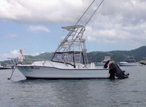 Fishing Line 30 Feet