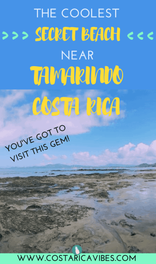 We visited Playa Avellana recently as a spontaneoustrip from Tamarindo. It ended up being our favorite experience while in Tamarindo! Here's a complete guide to visitin