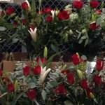 Premium Roses with Vase