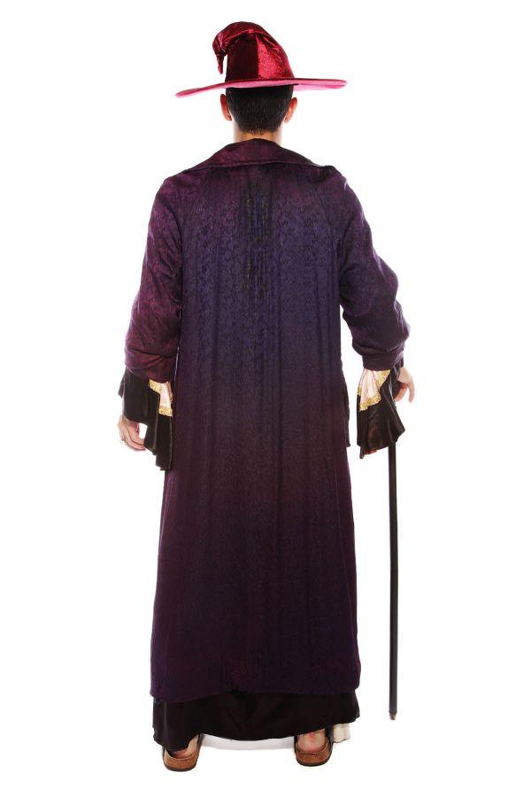 MAGICIAN WIZARD SORCERER COSTUME back