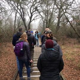 Guided Natural History Walk