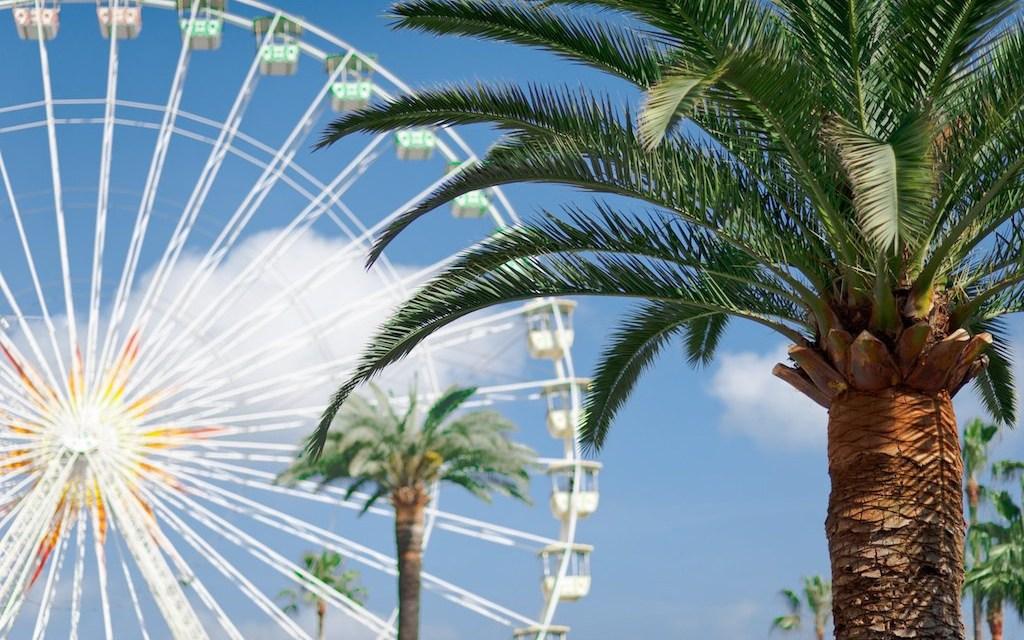 Photo de la semaine : Palmiers et grande roue