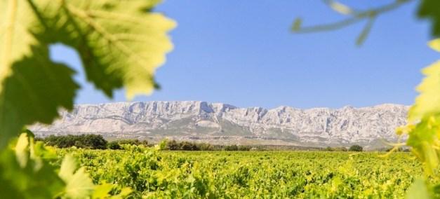 La Route des Vins de Provence