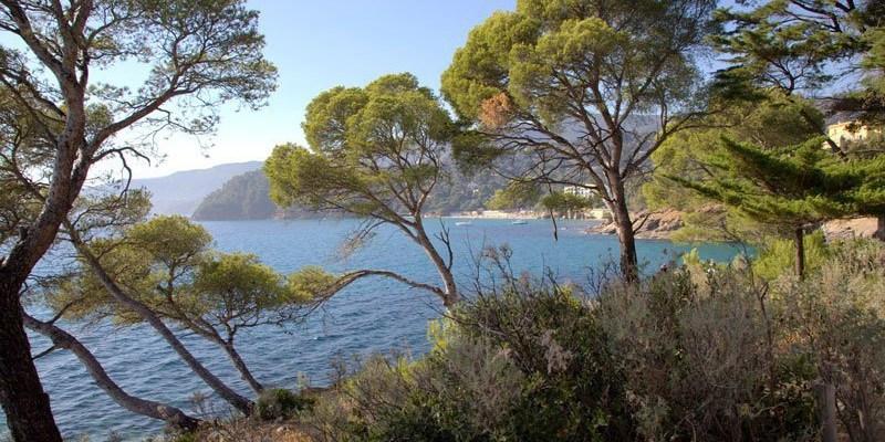 Photo de la semaine : Rayol-Canadel-sur-Mer