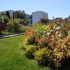Jardin d'Eden Musée d'Art Moderne et d'Art Contemporain