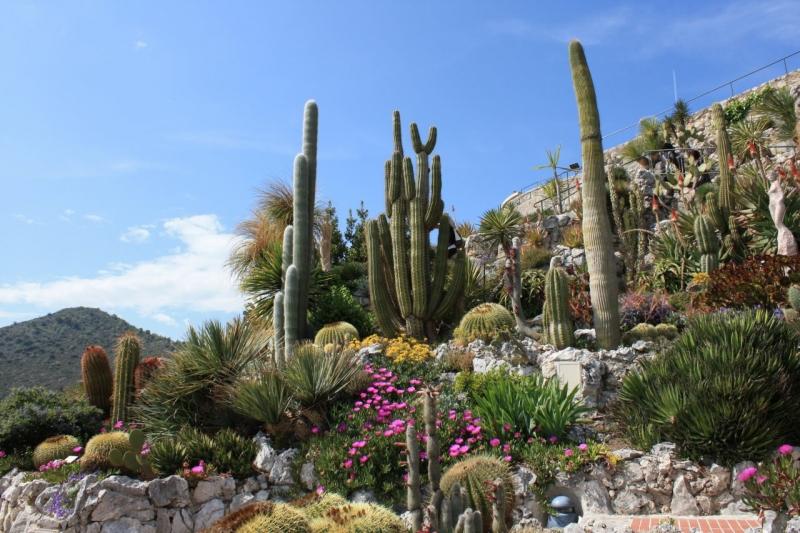 Jardin Exotique   COTE.AZUR.FR