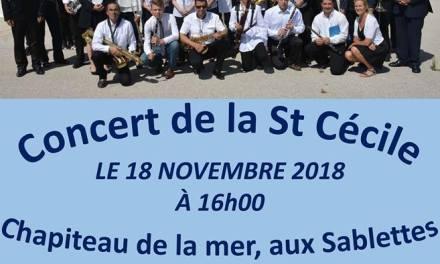 Concert de  l'orchestre philharmonique la Seynoise