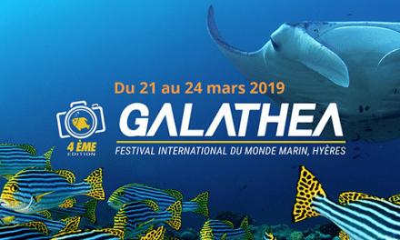 Galathea, Festival International du Monde Marin à Hyères