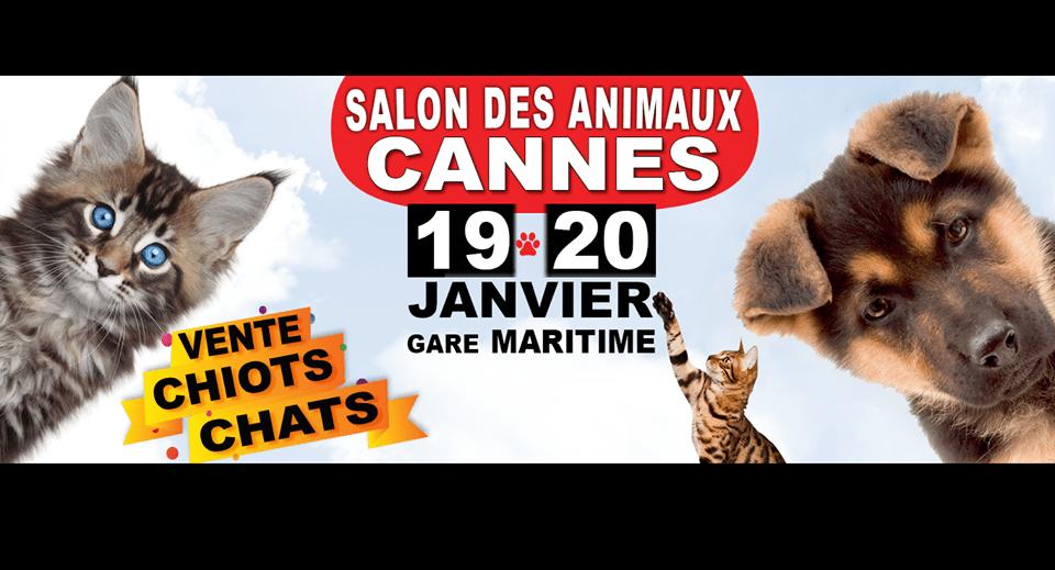 Le Salon du Chiot et du Chaton à Cannes
