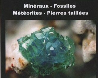 35ème salon minéraux – fossiles et pierres taillées – ville de la Garde