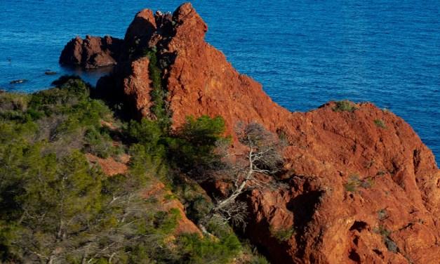 Les roches rouges du bord de mer