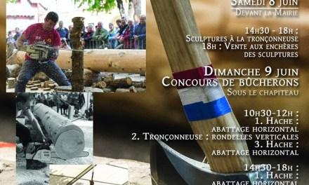 Fête du Bois à Saint-Martin-Vésubie
