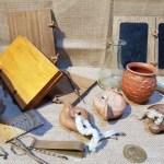 Le Romain dans tous ses états au Musée d'Archéologie de Cimiez