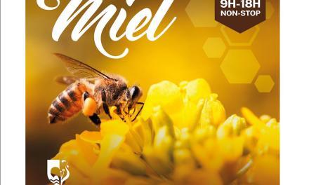 4ème Fête du Miel