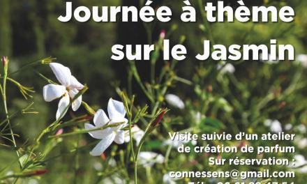 Journée à thème sur le Jasmin