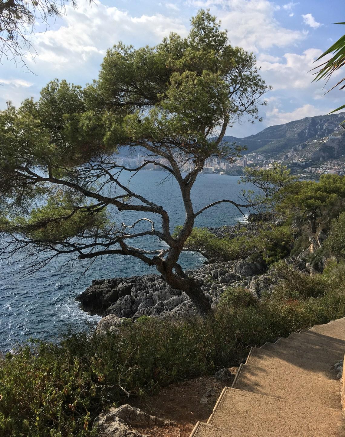 Der Zöllnerweg - um das Cap Martin nach Monaco