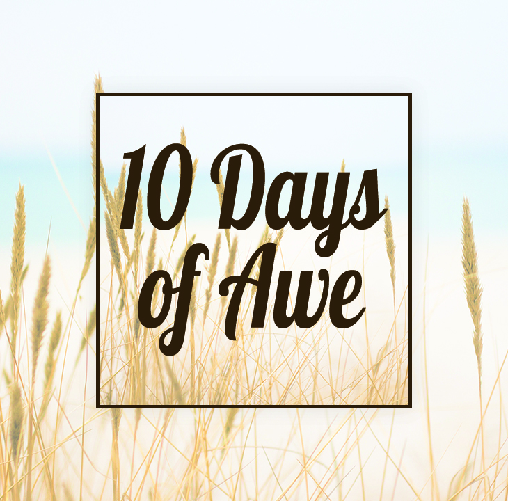 Image result for 10 days of awe bible
