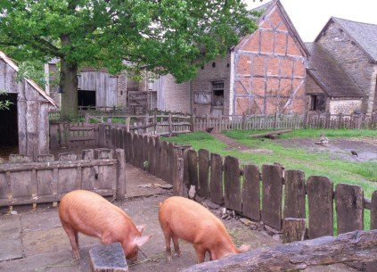 Mary Ardens Farm Shakespeare Rare Breeds Cotswolds